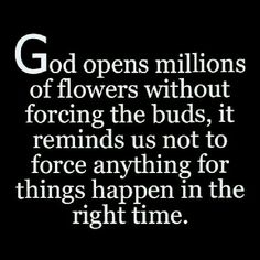 Now Quotes, Quotes About God, Bible Quotes, Bible Verses, Scriptures, Prayer Quotes, Daily Quotes, Religious Quotes, Spiritual Quotes