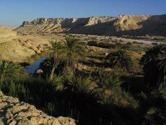 10. Этот оазис скрыт в глубине пустыни Омана, Аравийский полуостров.