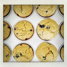 Chia & Blueberry Muffins Recipe on Food52 recipe on Food52