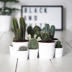 Não precisa de muito, não precisa ser trabalhoso, basta querer decorar e dar um…