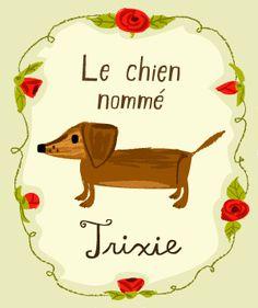 trixie the dachshund