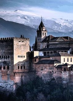 Alhambra Palace, Granada, Spain☆We all living beings are made of the same energy and substance either mater or antimatter, therefore we have to respect life in all its disguises starting with animals and environment, going organic and vegetarian is a priority, http://stargate2freedom.com