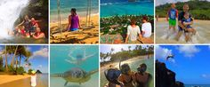 #8 Oahu Private Tours