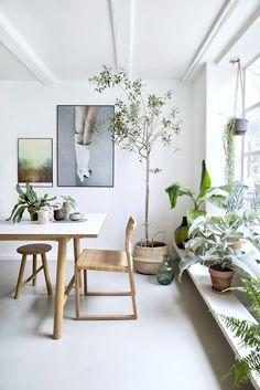 Skap drivhusstemning innendørs ved hjelp av møbler i naturmaterialer og masse grønne planter.