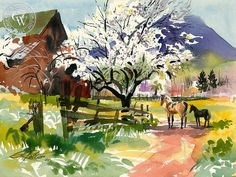 """""""Almond Blossoms, Clayton, 1969"""" watercolor by Ken Potter"""