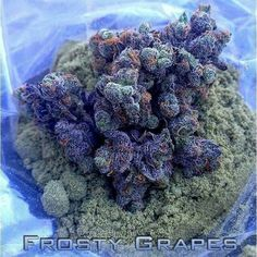 #Download Blowed Today https://soundcloud.com/ebjade/blowed-today-by-ebjade-feat ~__~ #BlowedToday    Frosted Grapes