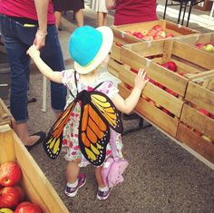 A little butterfly visited us at the market on Saturday!