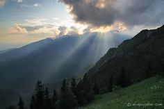 ANA POGAČAR BLOG: Velika planina