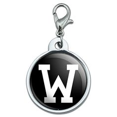 Chrome Plated Metal Small Pet ID Dog Cat Tag Letter Initial Black White  W Initial -- Check out this great product. (Note:Amazon affiliate link)