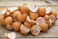 О пользе яиц и яичной скорлупы 0