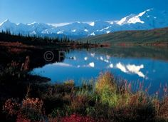 Photo of Wonder Lake and Mount McKinley in Denali National Park with beautiful fall colours in Alaska, USA.