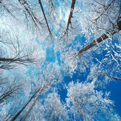 Frozen Sky Photographic Print by Philippe Sainte-Laudy at AllPosters.com