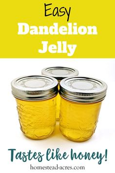 You'll love making this unique homemade jelly with your kids. Dandelion jelly is easy to make and tastes just like real honey. Learn how to make this amazing jelly and can it to enjoy all year long. Jelly Recipes, Jam Recipes, Easter Recipes, Great Recipes, Cooking Recipes, Dandelion Jelly, Dandelion Flower, Dandelion Wine, Fireweed Jelly