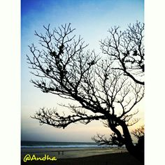 Waiting for sunset to come at Pok Tunggal beach, Gunung Kidul, Yogyakarta.