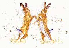 Boxing Hares.  A couple of adolescent hares have fun sparring up and creating sparks in a muddy field...