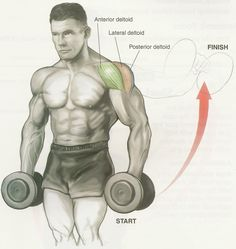 Dumbell lateral raise for shoulders (deltoids).