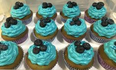 Blue, blue, blueberry cupcakes.  This is white cake from scratch with blue coloring, butter and cream cheese icing from scratch with blue coloring, fresh blueberries and blue shimmer sugar as garnish.