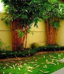Image Result For Sri Lanka House Landscape Design House