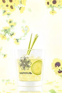 http://www.samova.net/blog/tag/Tee-Cocktail/