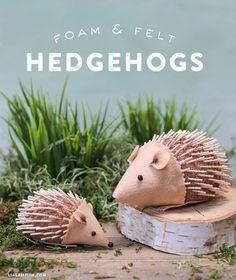 Foam_Felt_Hedgehogs_DIY