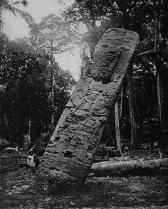 Stela E at Quiriguá, an ancient Maya archaeological site, Guatemala, ca. 1909