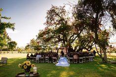 Planificar iluminación en el día de matrimonio - fotografía de matrimonios. Ideas iluminación boda. Wedding light ideas. Matrimonio Viña Undurraga