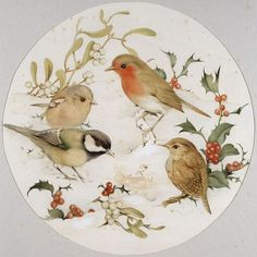 Birds In the Snow With Holly and Mistletoe, Edward Julius Detmold, Stock Photo Bird Pictures, Pictures To Paint, Painted Ceramic Plates, Illustrator, Bird Artwork, China Painting, Pretty Birds, Royalty Free Images, Kitsch