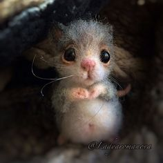 Needle felted little mouse by Anna Romanova