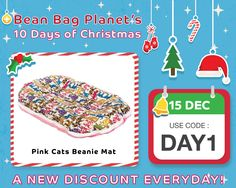 10 Days Of Christmas, Pink Cat, Coding, Programming