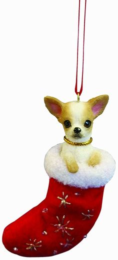 """Amazon.com: Chihuahua Christmas Stocking Ornament with """"Santa's Little Pals""""…"""