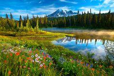 """Rainier Reflections"" Mount Rainier National Park by Jeffrey Murray"