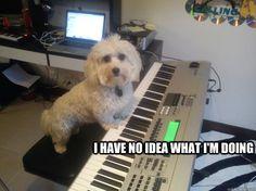 music producer memes
