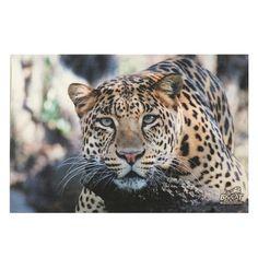 Canvas Photo Art - Soulful Simba Leopard