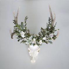 Mule Deer Skull with Flower Crown by Meghan LaCroix Deer Skull Decor, Deer Head Decor, Deer Skulls, Deer Antlers, Moose Decor, Deer Heads, Antler Crafts, Antler Art, Deer Mount Decor