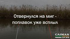 Отвернулся на миг — поплавок уже всплыл   Поговорки о рыбалке от Caiman Fishing Cup 2016. http://www.caiman.ru/fishing/  Следите on-line за нашим уловом!  #рыбалкавастрахани #caimanfishingcup #рыбалка #астрахань #мумра #база177