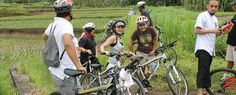 Sawah Cantik Di Ubud Sebagai Salah Satu Obyek Menarik Ketika Outbound Di Bali Dengan Tema Amazing Race