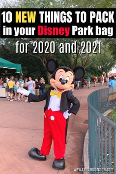 10 More Things to Buy for Your Disney World Park Bag in 2020