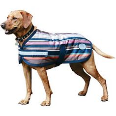 WeatherBeeta Joules Sabrina Stripe Dog Blanket