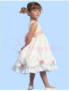 The Lastest Style Little Girl's Party Dresses Ball Gown Dresses