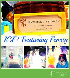 ICE Featuring Frosty the Snowman at the Gaylord National in Washington, DC #HollyJollyGN