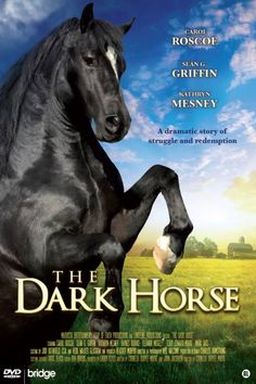 The Dark Horse Movie Released June 2008 Horse Movies, Horse Books, Dog Books, Hallmark Christmas Movies, Hallmark Movies, Great Movies To Watch, Good Movies, Horse Story, Movie Releases