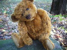 """GORGEOUS and RARE 13 in. BLANK Button Cinnamon Steiff~ """"Chesney"""""""