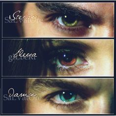 Just pointing something out elena and Damon's eyes look better together then Stefan's and Elena's. I mean green and brown grouse and then there's blue and brown and it's like sweat Jesse.