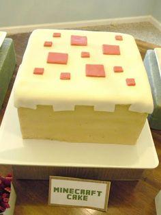 A Fun Minecraft Party!