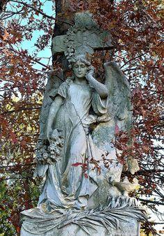 Gorra (Brown Autumn)    At St. John's Cemetery.