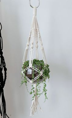 macrame plant hanger+macrame+macrame wall hanging+macrame patterns+macrame projects+macrame diy+macrame knots+macrame plant hanger diy+TWOME I Macrame & Natural Dyer Maker & Educator+MangoAndMore macrame studio Macrame Hanging Planter, Macrame Plant Holder, Hanging Planters, Plant Holders Diy, Hanging Tapestry, Macrame Art, Macrame Projects, Macrame Knots, Macrame Modern