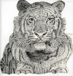 This is my favorite piece I have made. It is a tiger made out of dots. This took me forever and was my final art project in high school.