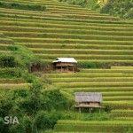 Visiter le nord du Vietnam en 3 jours.