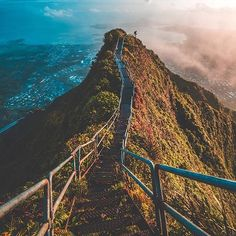 Stairway to Heaven, Oahu, Hawaii  Photography by @chipmun_k