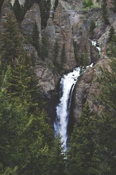 yellowstone national park, tower falls